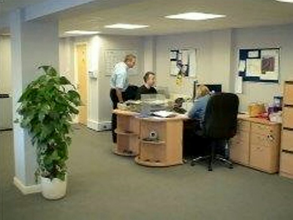 SWNS_OFFICE_PLANT_02_lee8Mch.jpg